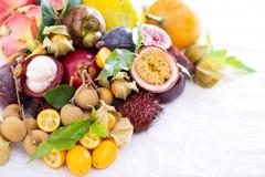 Exotiska frukter på vitbakgrund Arkivbilder