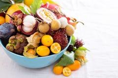 Exotiska frukter på vitbakgrund Arkivbild