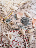 Exotiska lopp till Stilla havbegreppet Fotografering för Bildbyråer