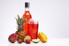 Exotiska röda alkoholdrinkar som ställs in med frukter Royaltyfri Bild