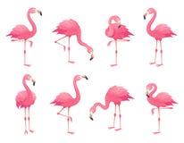 Exotiska rosa flamingofåglar Flamingo med steg fjädrar står på ett ben Rosig vektor för tecknad film för fjäderdräktflamfågel stock illustrationer