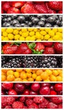 Exotiska sommarfrukter Arkivbild