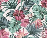 Exotiska tropiska blommor i pastellfärgade färger Arkivfoton