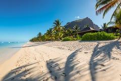 Exotiska tropiska ferier - Mauritius ö Arkivfoton