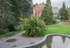 Exotiska växter, damm och gräsmatta i parkera Arkivfoton
