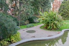 Exotiska växter, damm och gräsmatta i parkera Fotografering för Bildbyråer