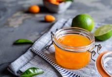 Exotiskt kumquatdriftstopp med mandariner arkivbilder