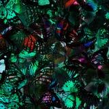 Exotiskt mörker - grön bakgrundstextur vid sammanställningen av många arkivfoto