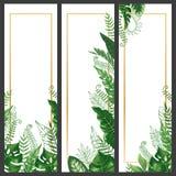 Exotiskt sidabaner Det tropiska monsterabladet, gömma i handflatan vektorn för baner för filial- och för den tappninghawaii natur royaltyfri illustrationer