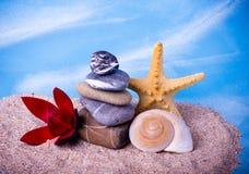 Exotiskt skal, stenar, pärlor och röd blomma Arkivbild