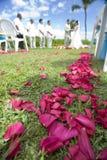 exotiskt vändkretsbröllop wide royaltyfri fotografi