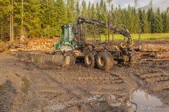 Expéditeur - bûcherons de véhicule pour le transport du bois de construction de Photo libre de droits