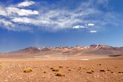 Expédition de l'Amérique du Sud, Bolivie Image stock