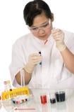 Expérience chimique. Image stock