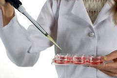 Expérience chimique Photographie stock