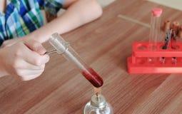 Expériences sur la chimie à la maison Les mains du ` s de garçon de plan rapproché chauffe le tube à essai avec le liquide rouge  Photo libre de droits