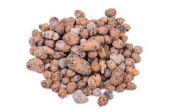 Expanded Clay Aggregate Stock Images
