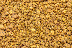 Expanded granulated cattle feed Royalty Free Stock Images