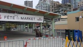 Expansão 2017 do mercado de Pike durante a construção fotos de stock