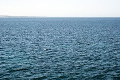 Expanse of blue water choppy sea with calm horizon stock photography