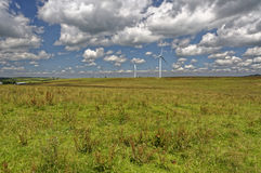 An expanse of green field with wind mills Royalty Free Stock Photography