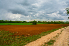 Expanse of lawn with the field just plow Royalty Free Stock Images
