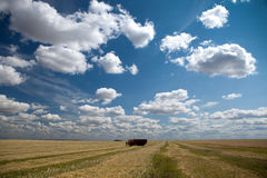 Expanses of Central Russia, the Volga region. Stock Photo