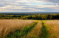 Expanses of Russia. Open spaces of Russia in the morning at sunrise Stock Photos