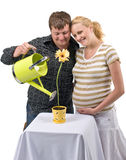 Expectant couple and flower Stock Photo