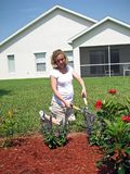 expectant gardening mother Στοκ Εικόνα
