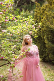 Expectant mother in gently pink negligee stands near the magnolia which blooms with pink flowers. Stock Photos