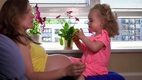 Expectant mother and her cute daughter eating apple fruit stock video footage