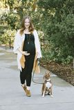 Expectant Mother Walks Her Small Dog in the Park on A Sunny Day stock photography