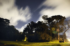Expectant night. Night shot of trees and grass with cloud movement emphasized Royalty Free Stock Images