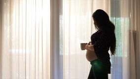 Expectant young mother sitting by the sunny window drinking tea and caressing her belly at sunrise stock video