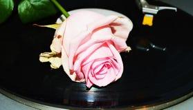 Expectativa do amor Fotos de Stock Royalty Free