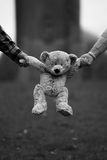 Expecting parents holding teddy bear in hand. Parents expecting a child holding a teddy bear by the arms Royalty Free Stock Images