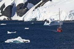 Expedición de la fauna de la Antártida imagen de archivo
