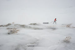 Expedition AMundsen Royaltyfria Foton