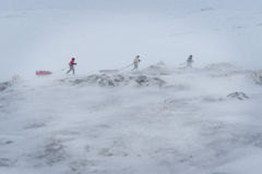 EXpedition. Amundsen 2014. A 100km race with ski`s and sled, crossing the Hardangervidda, Norway Royalty Free Stock Photography