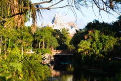 Expedition Everest Animal Kingdom Stock Photography