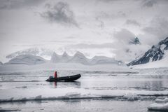 An expedition man reaching shores of Antarctica. An expedition man in red jacket reaching rocky shores of Antarctica on a motorboat, floating among the ice and