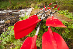 Expedition to kayaking Royalty Free Stock Image