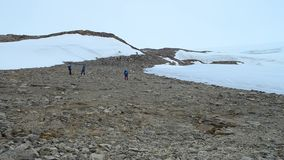 Expedition to the North pole. Group of men at the North pole. Men with trekking poles go in the mountains. stock footage