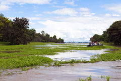 Expedition to a Tributary river of the Amazon Stock Photography