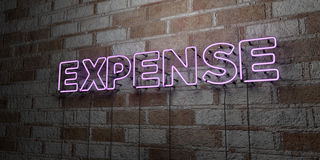 EXPENSE - Glowing Neon Sign on stonework wall - 3D rendered royalty free stock illustration Royalty Free Stock Images
