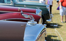 Expensive antique cars lined up Royalty Free Stock Images