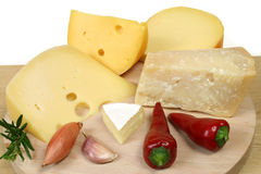 Expensive cheeses Stock Image