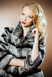 Expensive coat Stock Photography