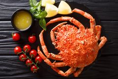 Expensive food: cooked whole crab spider with lemon and melted b. Utter close-up on the table. horizontal top view from above royalty free stock photo